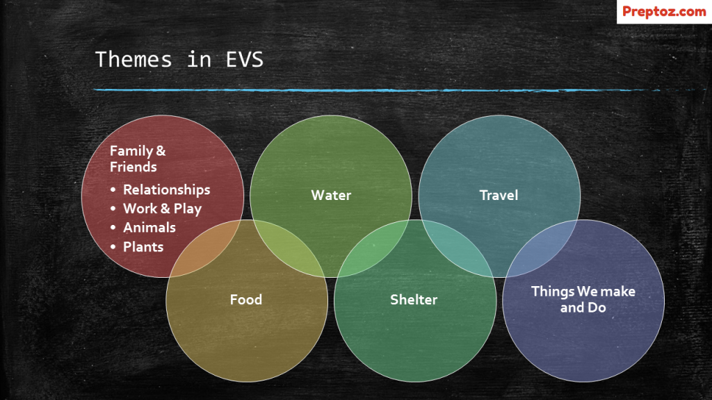 Themes in EVS as per NCF - Preptoz com